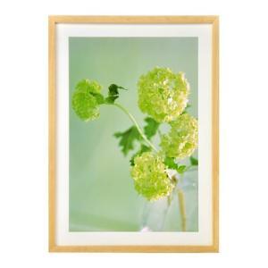ハクバ フォトフレーム 木製 リエージュ 写真サイズ:A3ノビ ナチュラル FWLG-NTA3N 4977187490374 HAKUBA hakuba