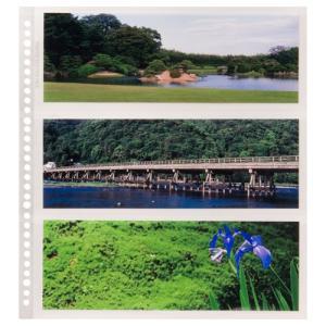 ハクバ フォトアルバム SF-1 プリントファイル 写真サイズ:パノラマサイズ 替台紙 4977187520491 HAKUBA