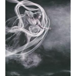 CD)陰陽座/風神界逅 (KICS-3104)