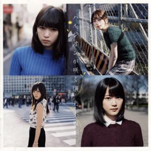 CD)乃木坂46/ハルジオンが咲く頃(Type B)(DVD付) (SRCL-9027)|hakucho