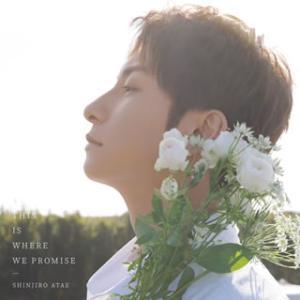 CD)SHINJIRO ATAE/THIS IS WHERE WE PROMISE(初回出荷限定盤)(DVD付 (AVCD-96689)|hakucho