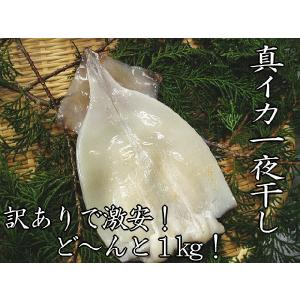 【訳あり:イカ一夜干し1kg】