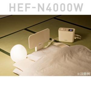 電位治療器 ヘルストロン HEF-N4000W 頭痛、肩こり、不眠症、慢性便秘でお悩みの方へ|hakuju-net|02