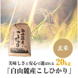 美味しさと安心で選ばれる「白山麓産こしひかり」 玄米 20kg
