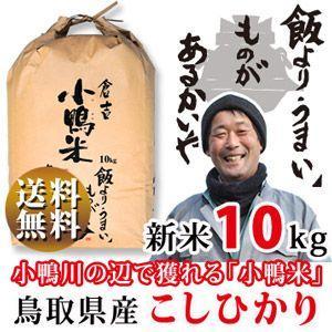 新米 29年 鳥取県産 コシヒカリ 10kg 白米・10kg...