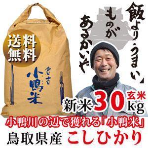 新米 29年 鳥取県産 コシヒカリ 27kg 白米・30kg...