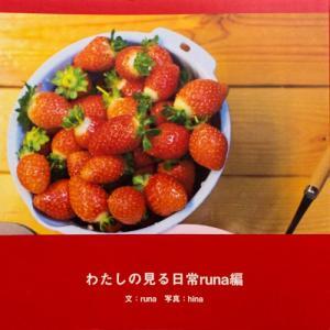 わたしの見る日常RUNA編〜あか〜  配送ポイント:4|hakushindo-store