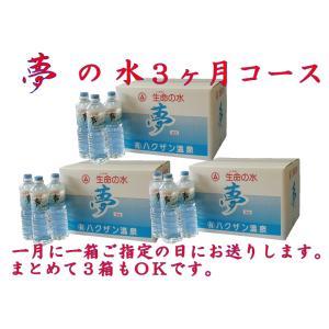 3ヶ月コース(九州・四国・本州地区の方) (生命の水夢1L×20本入り箱)×3 hakuzanyahustore
