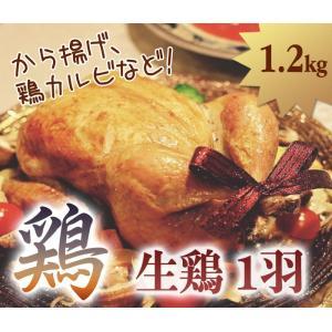 鶏 1.2kg グリラー 丸鶏中抜き ブラジル産|halla-mart