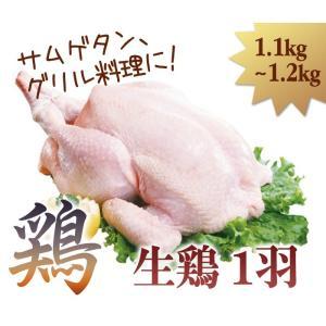 生鶏 1羽 1.1kg〜1.2kg サムゲタン 様々な鶏料理に|halla-mart
