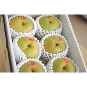 新甘泉(しんかんせん)通販 鳥取のブランド和梨を販売取寄。小...