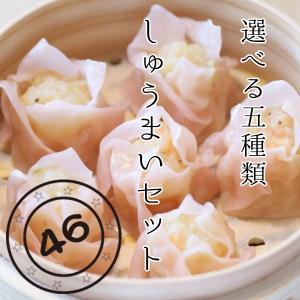 しゅうまい屋 四十六番 手作りしゅうまいセット 24個入り hamanako100