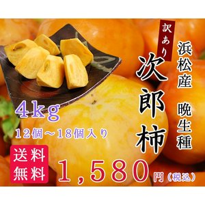 浜松産 訳あり 晩生 次郎柿4kg(12個〜18個) hamanako100