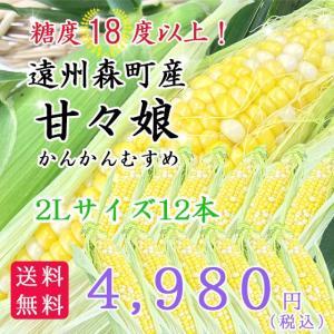 遠州森町産トウモロコシ 「甘々娘(かんかんむすめ)」2Lサイズ12本|hamanako100