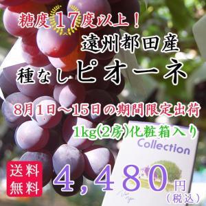 遠州都田産 種なしピオーネ 1kg(2房) hamanako100