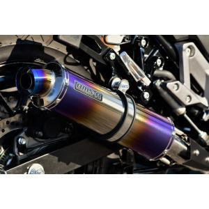 Vストローム250(V-Strom250) R-EVOヒートチタン スリップオンマフラー 政府認証 BMS-R(ビームス)|hamashoparts