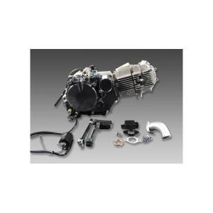 汎用レーシングタイプ150ccエンジン MINIMOTO(ミニモト) モンキー(MONKEY) hamashoparts