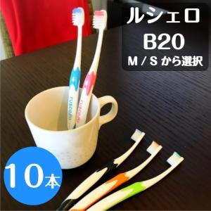 ルシェロ 歯ブラシ B20M 10本|hamigakilife