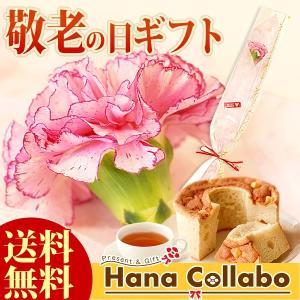 敬老の日プレゼント 花 セット 花束 生花 一輪 カーネーション スイーツ ケーキ お菓子|hana-collabo