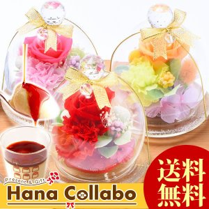 母の日 プレゼント プリザーブドフラワー ガラスドーム 女性 母 彼女 ギフト プリン|hana-collabo
