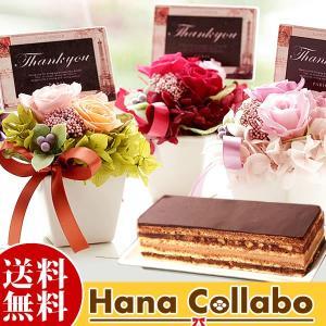 チョコレート ケーキ 2人用 誕生日 花 ギフト プレゼント 贈り物 プリザーブドフラワー 女性 母|hana-collabo