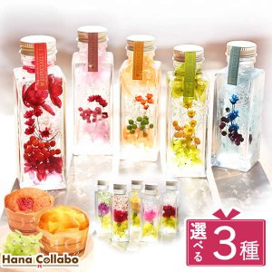 誕生日プレゼント 記念日 花 ギフト ハーバリウム|hana-collabo