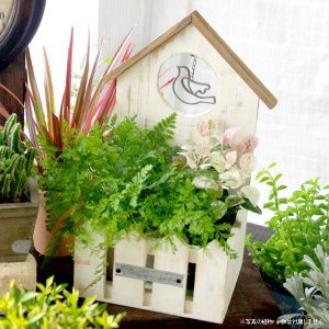 鉢カバー 木製 ウッドホワイトプランター ハウス|hana-kazaru
