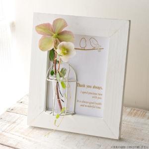 フラワーベース 花瓶 ガラス Wooden Frame w/little glass ウッドホワイトフレームベース バード|hana-kazaru