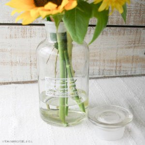 フラワーベース 花瓶 テラリウム ガラス メディスンボトル クリア|hana-kazaru