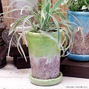 プランター おしゃれ 植木鉢 陶器 シャビーポット深鉢タイプ グリーン 約3.5号 |hana-kazaru