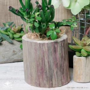 プランター おしゃれ 植木鉢 木製 流木フラワーポット 縦|hana-kazaru