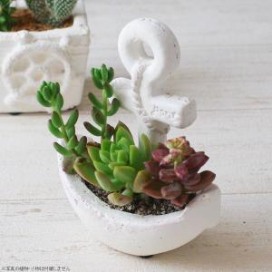 プランター おしゃれ 植木鉢 ブランアンカーポット|hana-kazaru