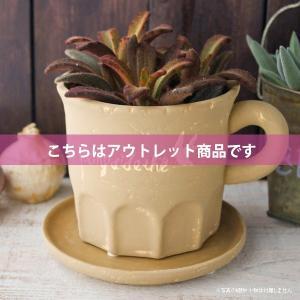 アウトレット 訳あり プランター おしゃれ 植木鉢 陶器 カッププランター カフェブラウン 3.5号|hana-kazaru