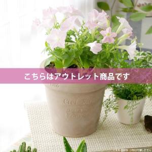 アウトレット 訳あり プランター おしゃれ 植木鉢 素焼きのナチュラルプランター ROUND S|hana-kazaru