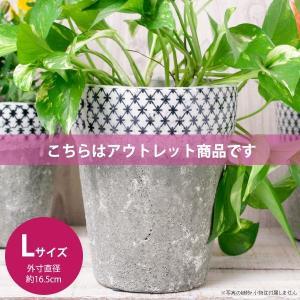 アウトレット 訳あり おしゃれ 植木鉢 陶器 クラシカルハイプランター Lサイズ 約5.5号|hana-kazaru