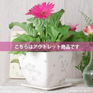 アウトレット 訳あり プランター おしゃれ 植木鉢  植物柄のスクエアプランター 約4.5号 受け皿付|hana-kazaru