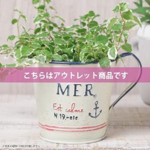 アウトレット 訳あり プランター おしゃれ 植木鉢  スチール ブランメールアンカーカップ 約3.5号|hana-kazaru