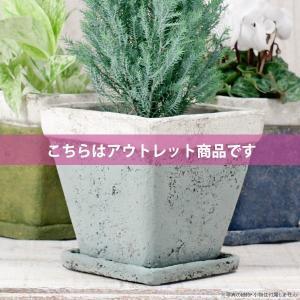 アウトレット 訳あり プランター おしゃれ 植木鉢 モンターニュ スクエアプランター ライトブルー 約4.5号|hana-kazaru