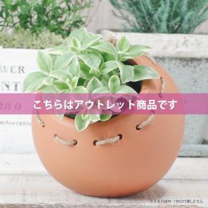 アウトレット 訳あり プランター おしゃれ 植木鉢  陶器 まんまるプランター 変形約4号|hana-kazaru