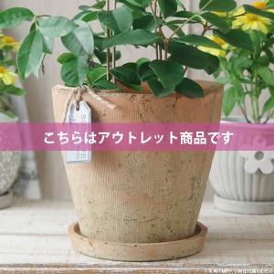 アウトレット 訳あり プランター おしゃれ 植木鉢  陶器 モッシーラウンドポット 約5.5号|hana-kazaru