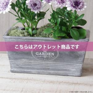 アウトレット 訳あり 植木鉢 セメント鉢 スイートホームガーデンレクトポット 約W20.5×D11.5×H9.5cm|hana-kazaru