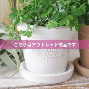 アウトレット 訳あり プランター おしゃれ 植木鉢  素焼きのシュクレ プティ ラウンド ホワイト 約4号|hana-kazaru