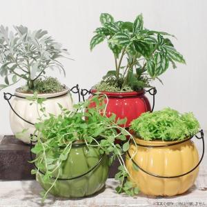 鉢カバー 陶器 可愛い おしゃれ カラフルフラワーポット|hana-kazaru