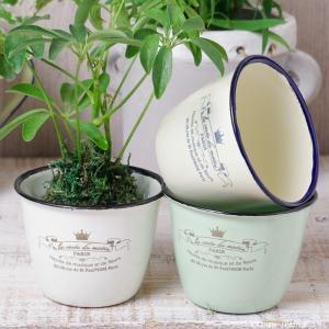 鉢カバー ホーローのアンティーク風ミニカップ|hana-kazaru