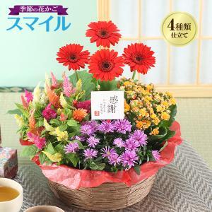 季節の花かご「スマイル」 誕生日花ギフト、送料無料でお届けします。高さ(約)25cm〜、幅(約)30...