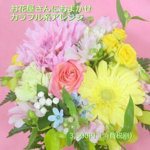 カラフル系 アレンジ お花屋さんにおまかせ フラワーギフト|hana-mizuki