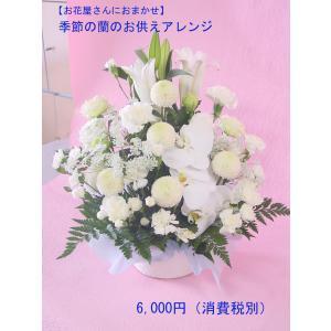 季節の蘭と白いお花のお供えアレンジ 命日・お悔やみに|hana-mizuki