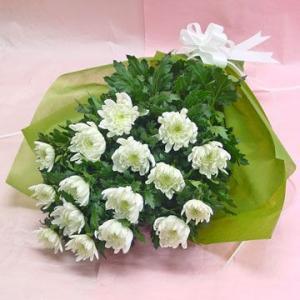 白菊の花 供花 花束 通夜・葬儀にも|hana-mizuki