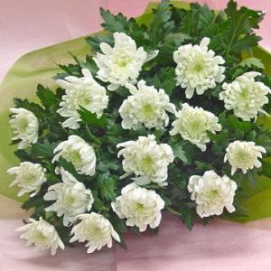 白菊の花 供花 花束 通夜・葬儀にも|hana-mizuki|02