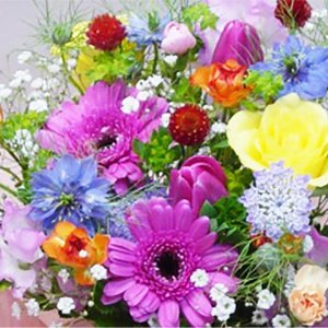 HAPPY(母の日)|hana-sandlot